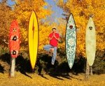 Gerry Lopez Surfboards